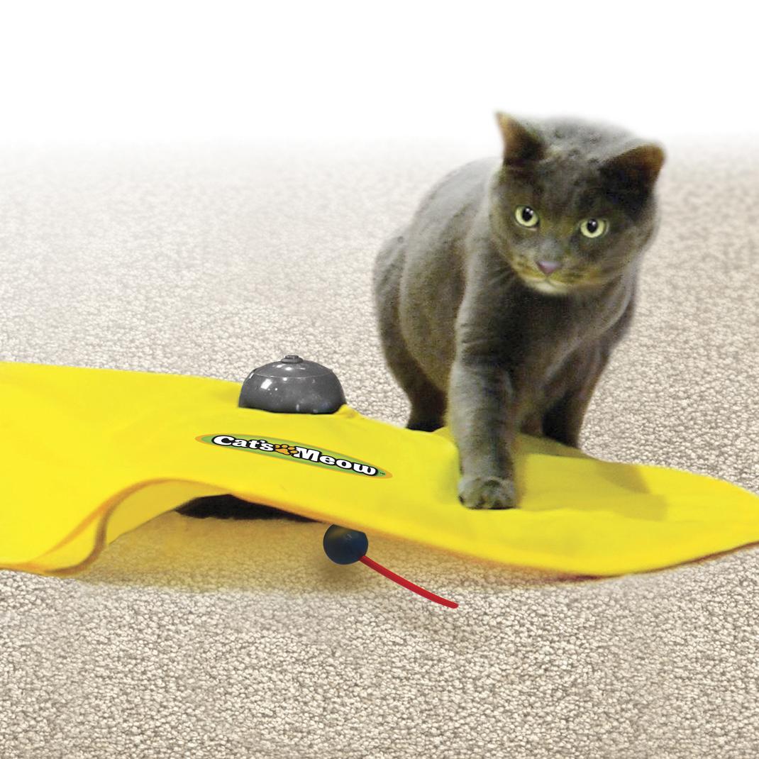 cats miaou jouet pour chats la boutique. Black Bedroom Furniture Sets. Home Design Ideas
